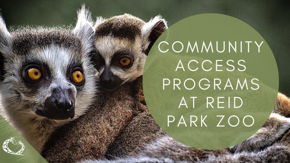 Reid-Park-Zoo-Expansion-Tucson-Arizona-Community-Access-Wordpress