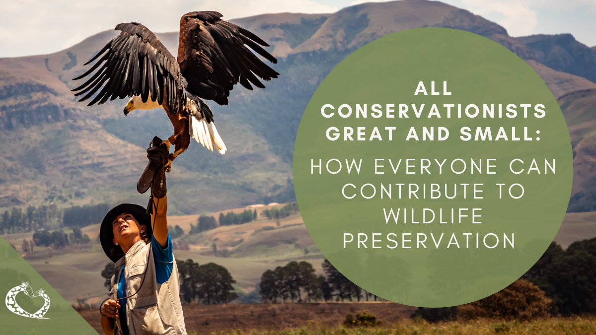 All Conservationists Great and Small: How Everyone can Contribute to Wildlife Preservation